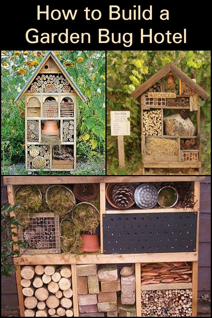 dbcadd98c0048a3276272568f407fa9c - Why Are Insect Hotels Beneficial To Gardens