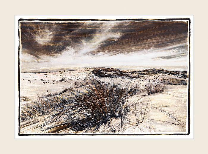 Desert Grass - Marlene Neumann Fine Art Photography  www.marleneneumann.com  neumann@worldonline.co.za
