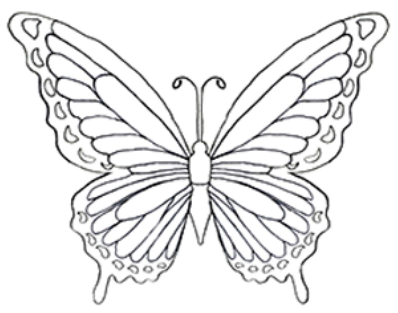 A Coloring Page Of A Butterfly