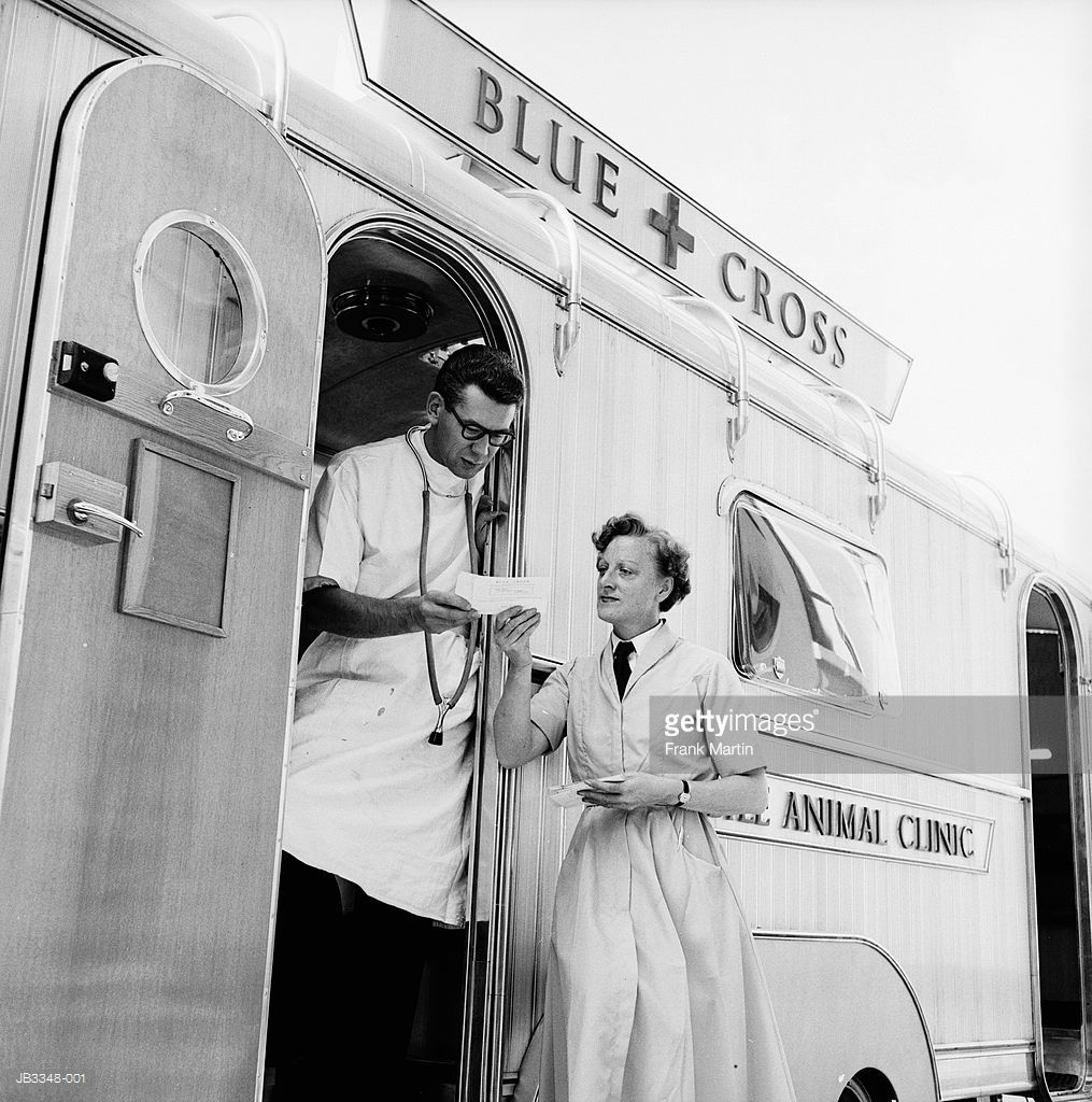 Veterinary surgeons prepare for their next patient at a