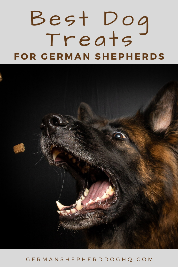 7 Best Treats For German Shepherds German Shepherd Dog Hq In 2020 German Shepherd Puppies German Shepherd Dogs German Shepherd