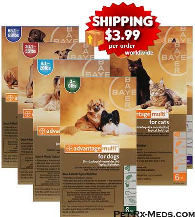 Discount pet drugs coupon