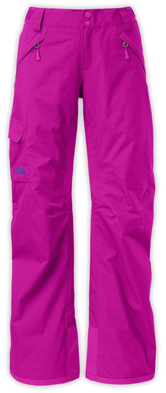 9fabc51c6 The North Face Freedom Insulated Ski Pant | Women's | Past Season 6 ...