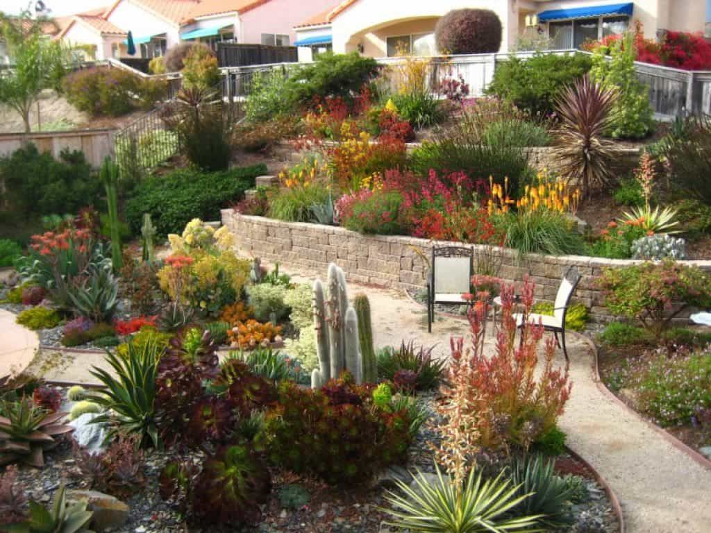 Sloped Drought Resistant Landscaping With Paver Walkway   Drought ...