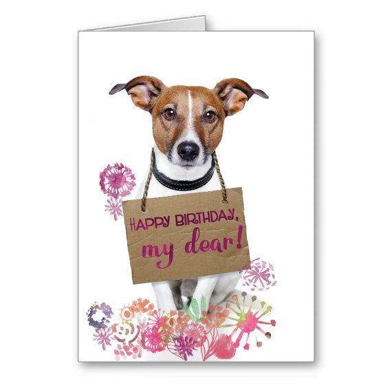 Greetings Card Happy Birthday Cards Dogs Jack By Thelazycatstudio