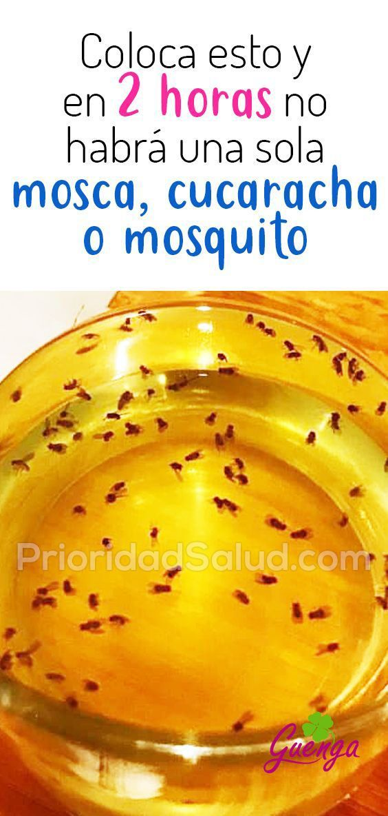 Pin By Trina Romero On Home In 2020 Mosquito Homemade Mosquito Cleaning Hacks