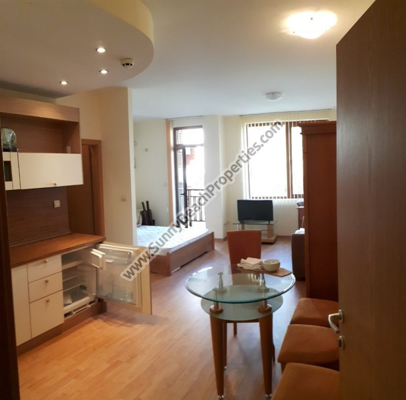Park view furnished studio apartment for sale in 5