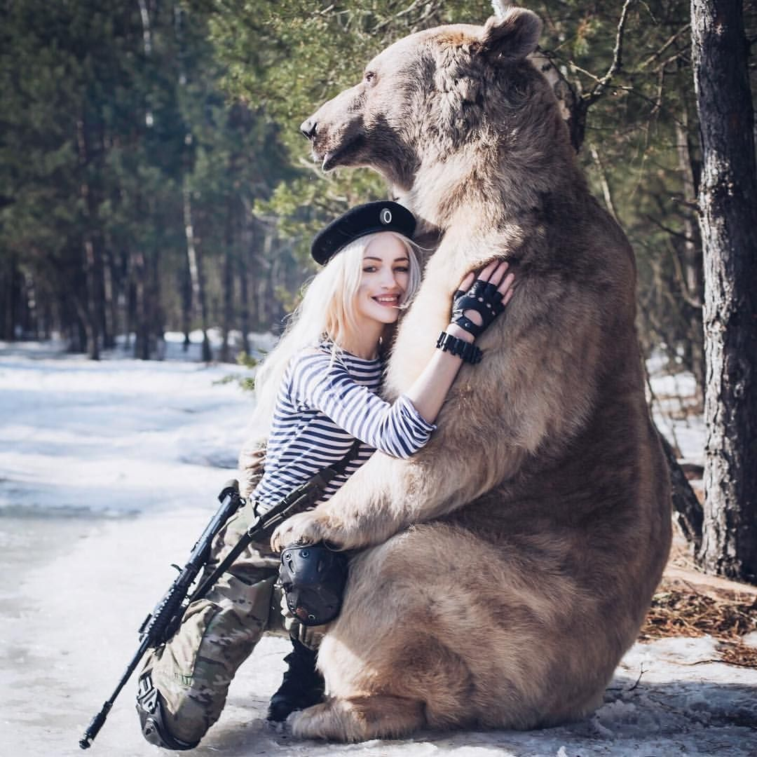 картинки медведя с пушкой вновь готовы