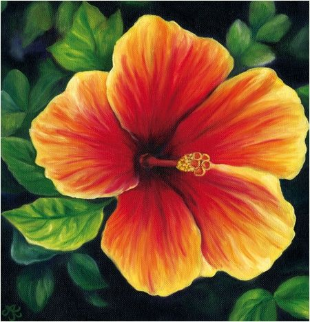 Tropical floral paintings google search canvas for How to paint flowers with oil paint