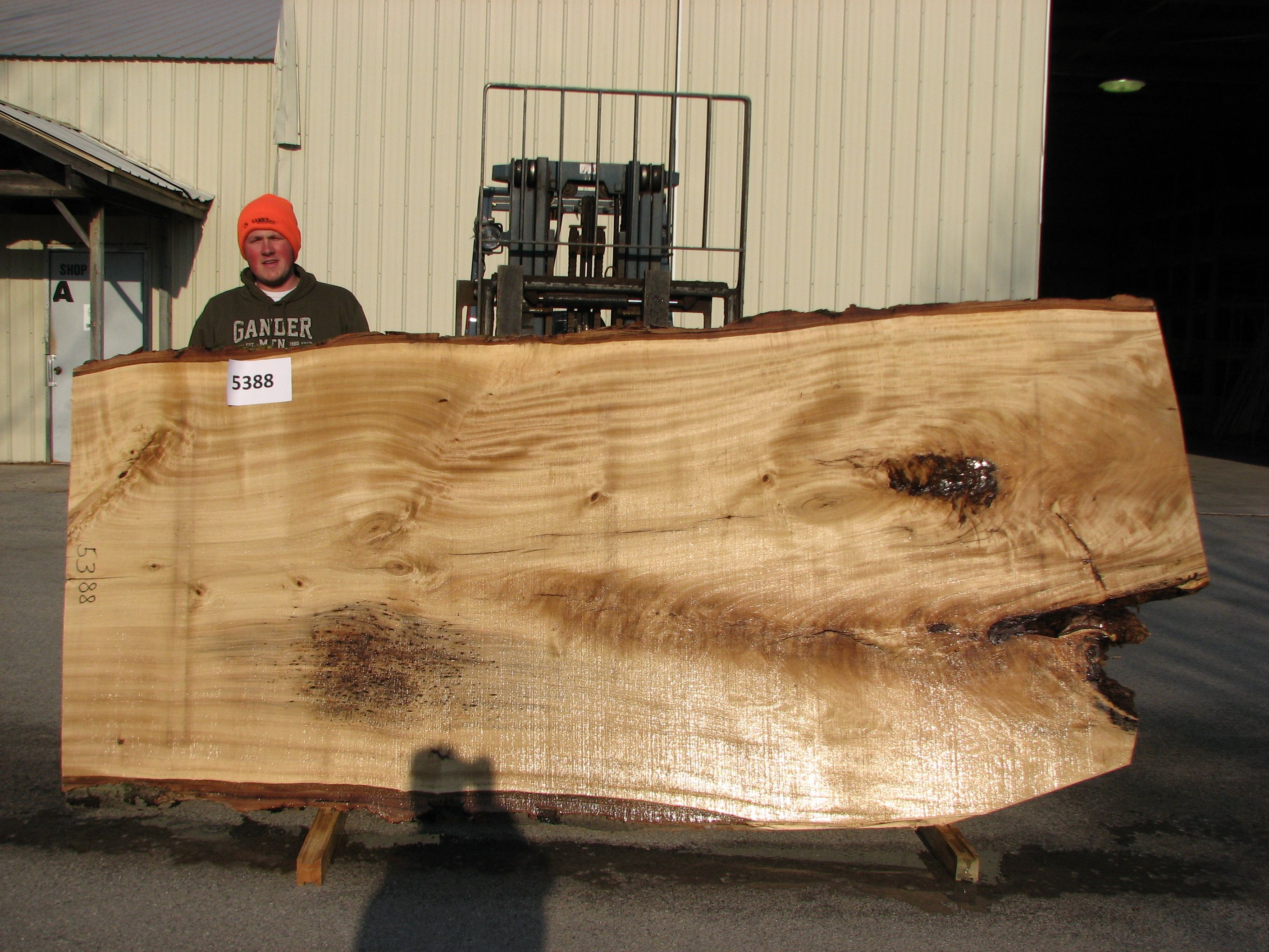 Cottonwood big wood slabs big wood slabs pinterest for Cottonwood designs