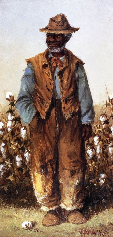 The Athenaeum Negro Man in Cotton Field (William Aiken