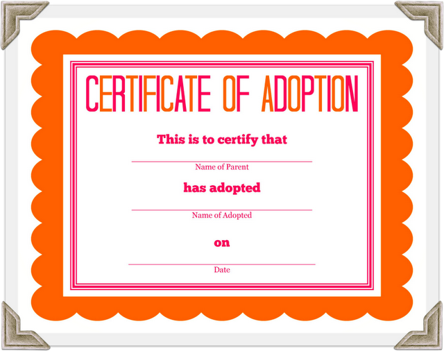 DetailOriented Diva Adoption Certificate Printable For Stuffed