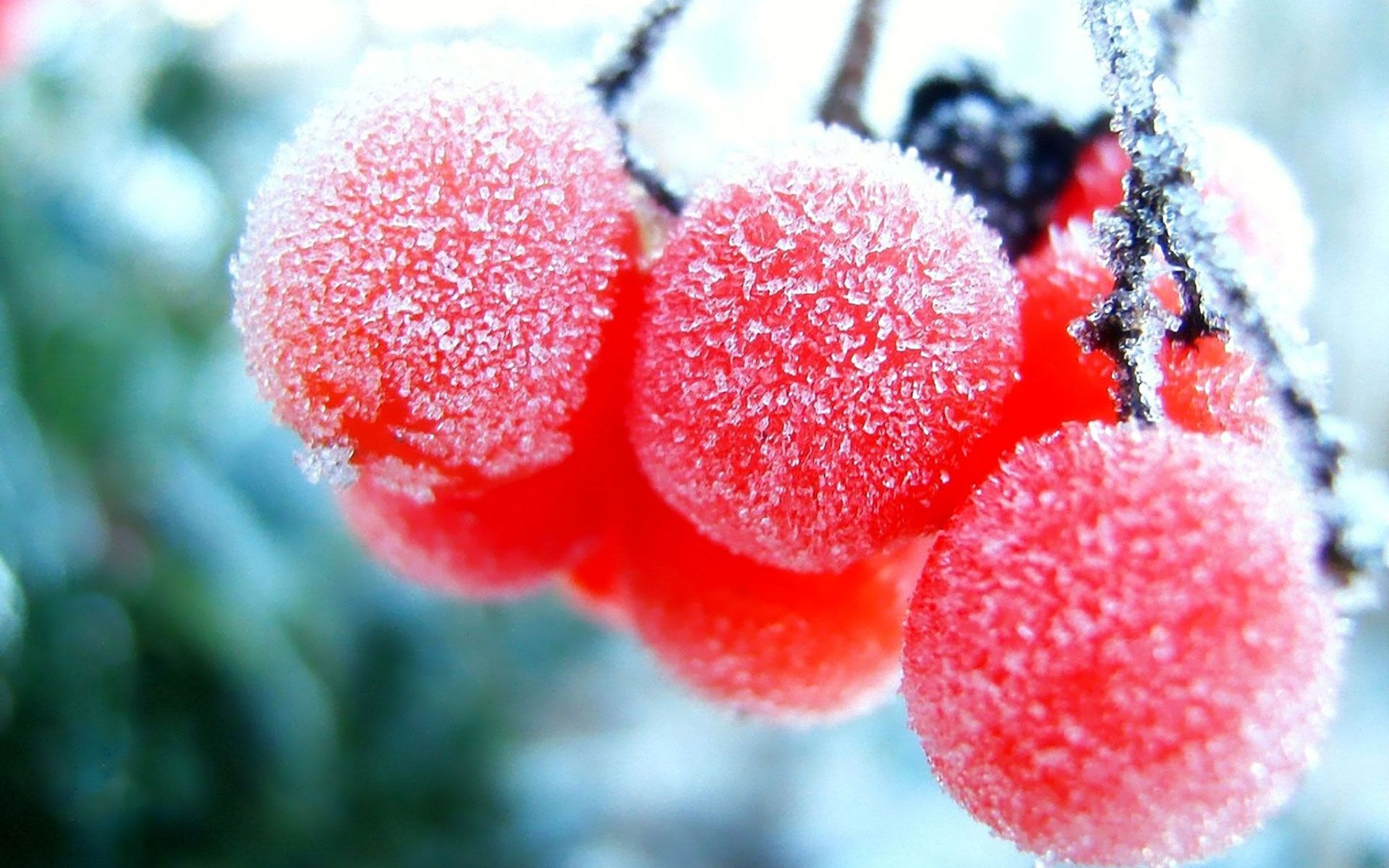 Download Smile On A Frosty Window Wallpaper - Frozen cherry wallpapers