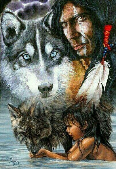 Native Americans  Wolf  Arte indio americano Imgenes de nativo