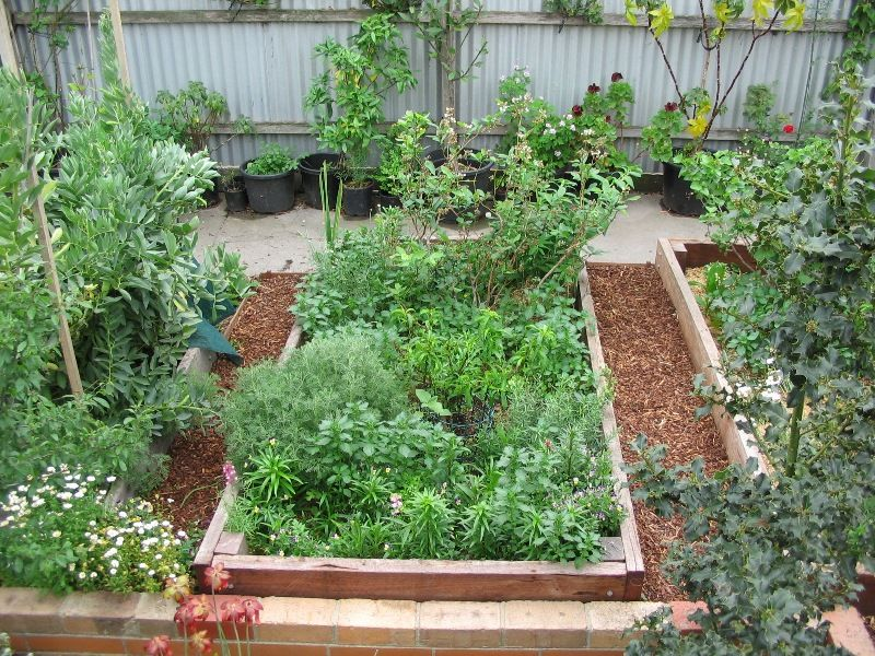 Deep green permaculture raised garden beds access to for Permaculture garden designs