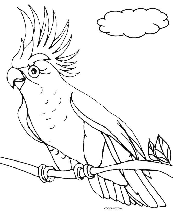 Printable Parrot Coloring Pages For Kids | Cool2bKids | Birds ...