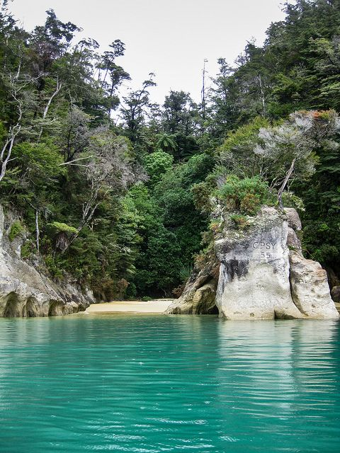 Rain coming down in the beautiful green water of Torrent Bay, New Zealand (shot from a kayak)