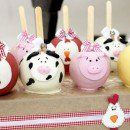 Small farm birthday party favors: Learn to