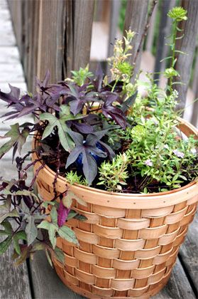 How To Make A Basket Planter Basket Planters Plants Garden