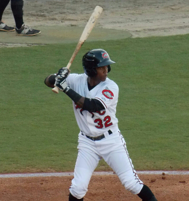 Erison Mendez Carolina Mudcats Minor League Baseball Baseball League