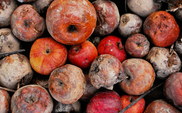 Rotten Apples Find New Purpose In Powering Sustainable Batteries Apple Latest Anti Aging Products Rotten