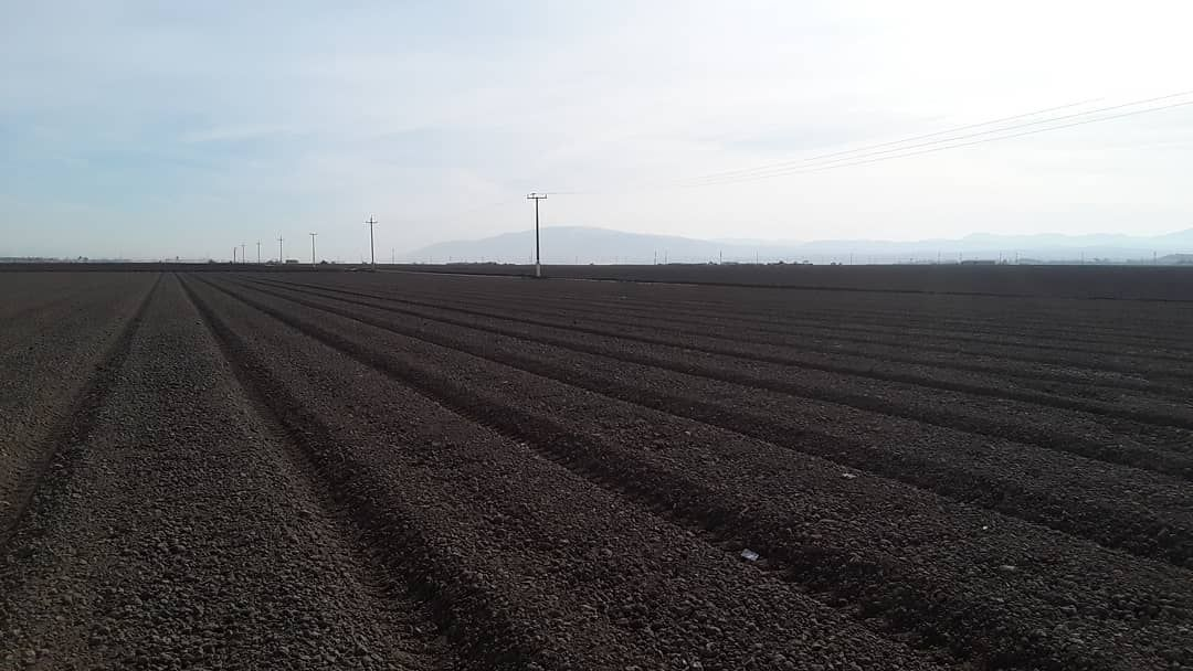 season nearing its end in the nothing but dirt fields