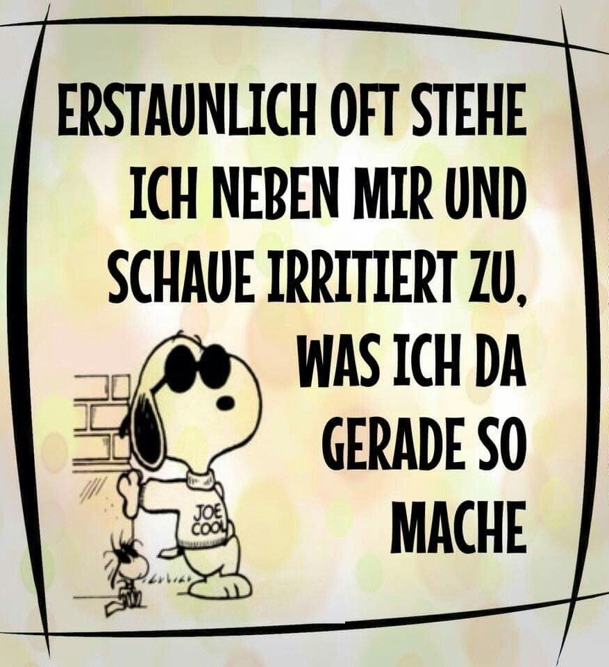 Snoopy Witzige Spruche Lustige Spruche Snoopy Zitate