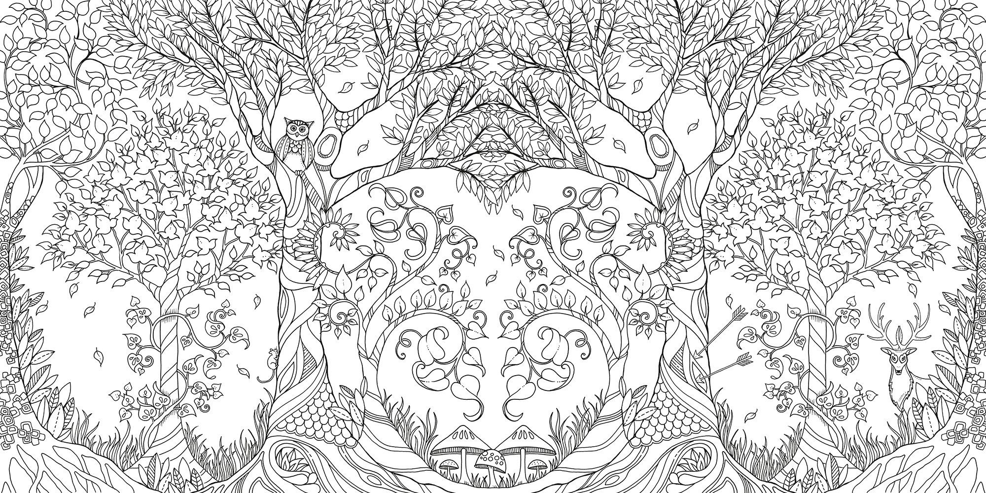 Enchanted Forest: An Inky Quest & Coloring Book: Amazon.de: Johanna ...