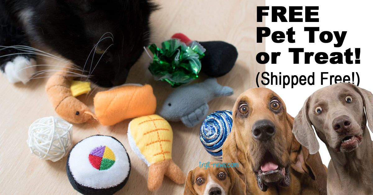 Free Cat Or Dog Toy Free Shipping Hurry Dog Toys Dogs Cats