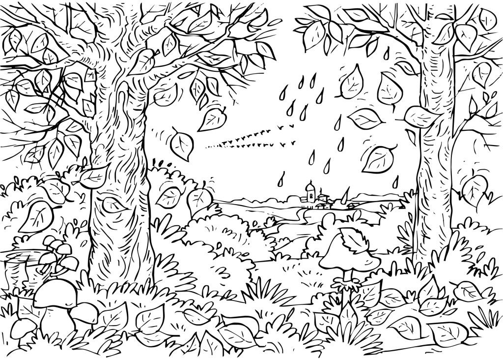 baby farm animal coloring pages | MP Head | coloring pages adult ...