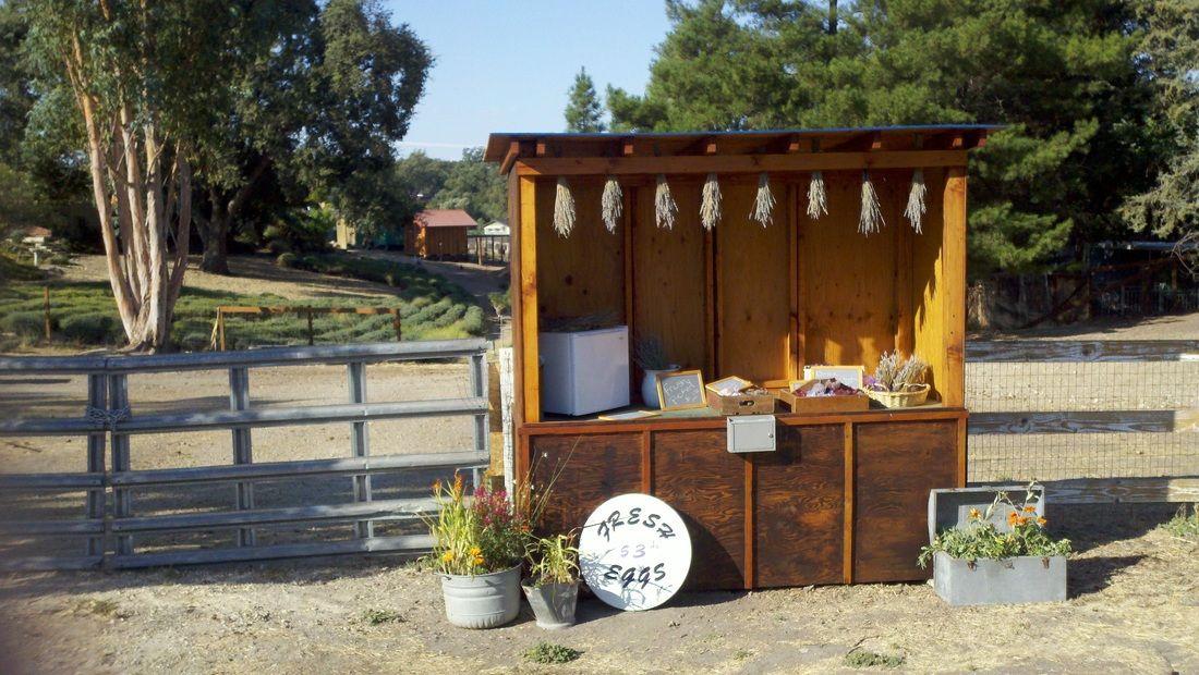Grays Lavender Farm 8865 San Gabriel Rd Atascadero Ca