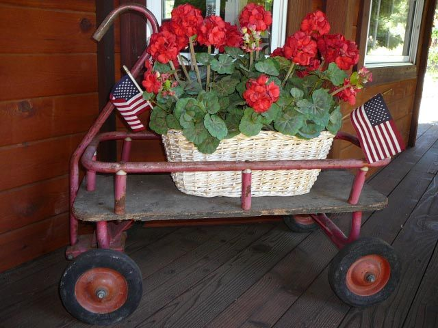 I love red geraniums and flags in July!