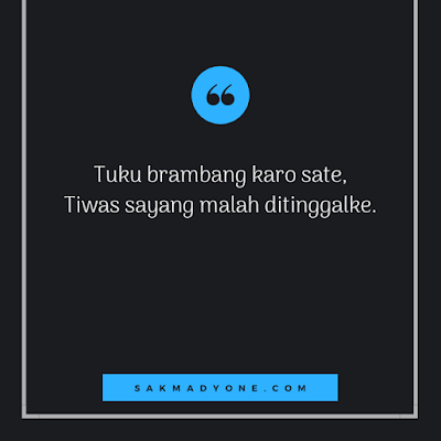100 Gambar Status Whatsapp Lucu Bahasa Jawa Terbaru 2020 Kata