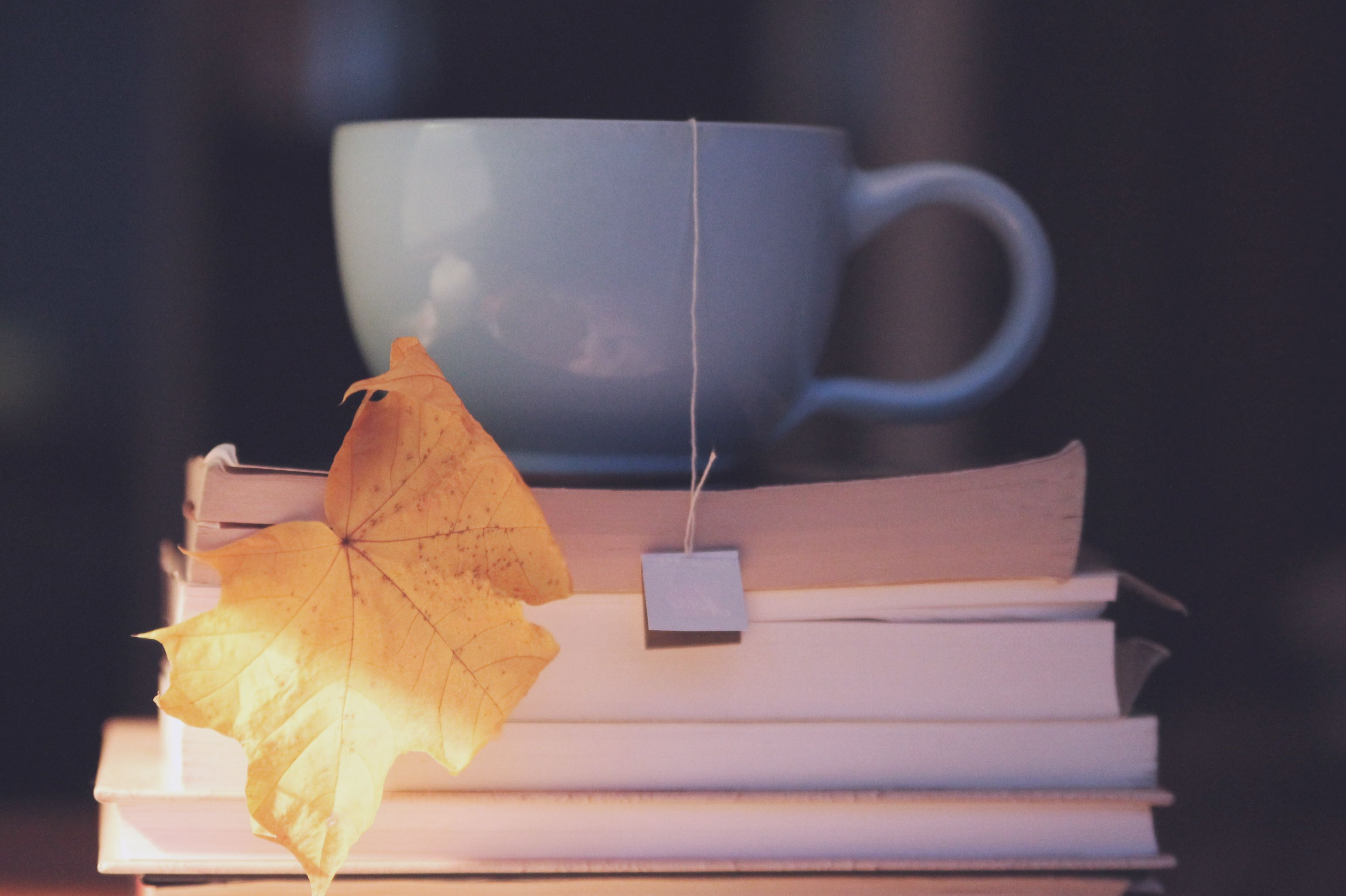 Autumn cup of tea Cosycosy windy evening  Life Actually  Pinterest