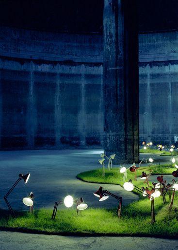 "Rune Guneriussen, ""A Charged Meadow"", 2009."