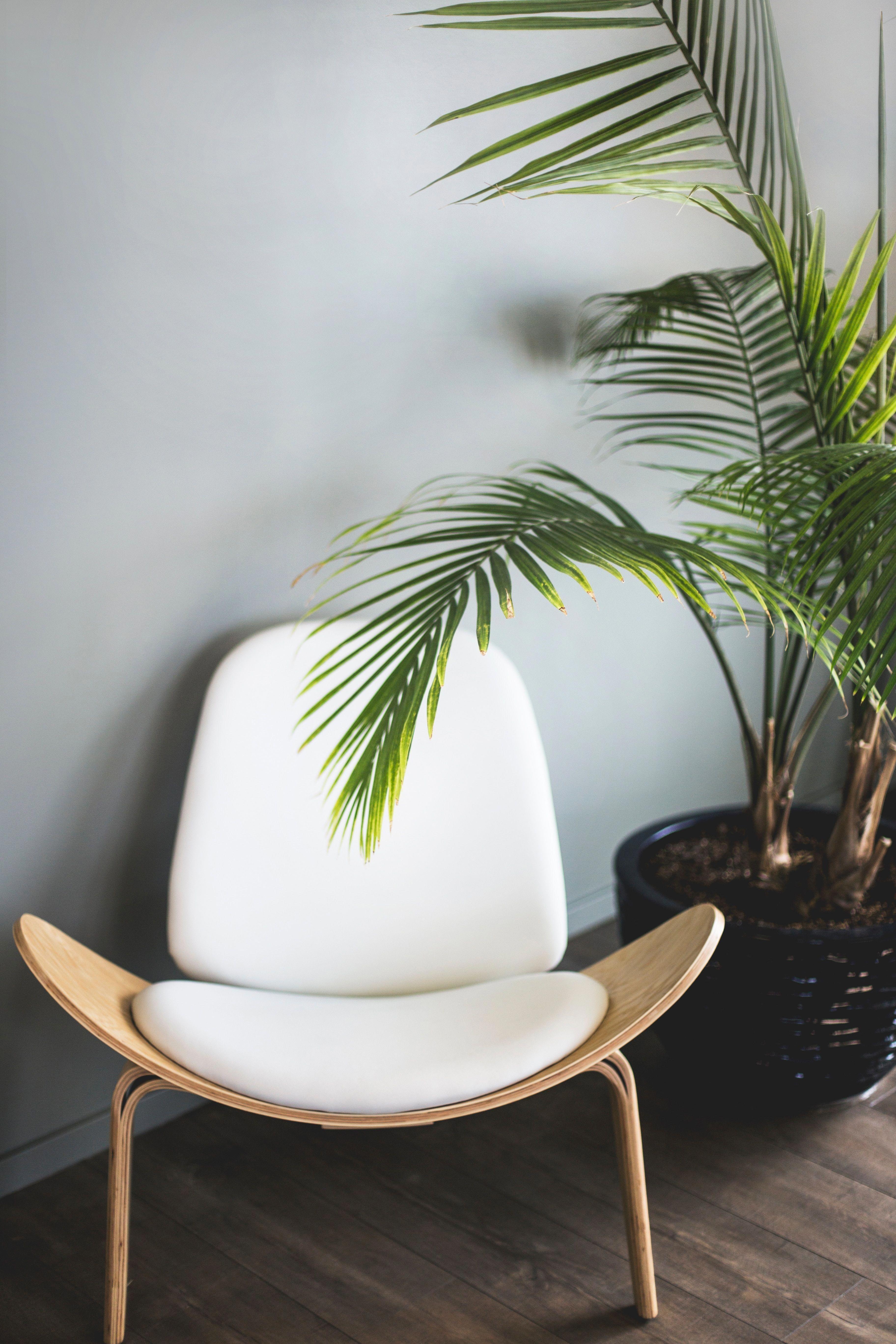 scandinavian indoor plants decor ideas interior design interiordesignideas also rh pinterest