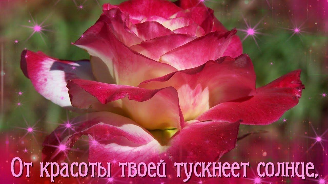 Цветы надежде картинки с надписью