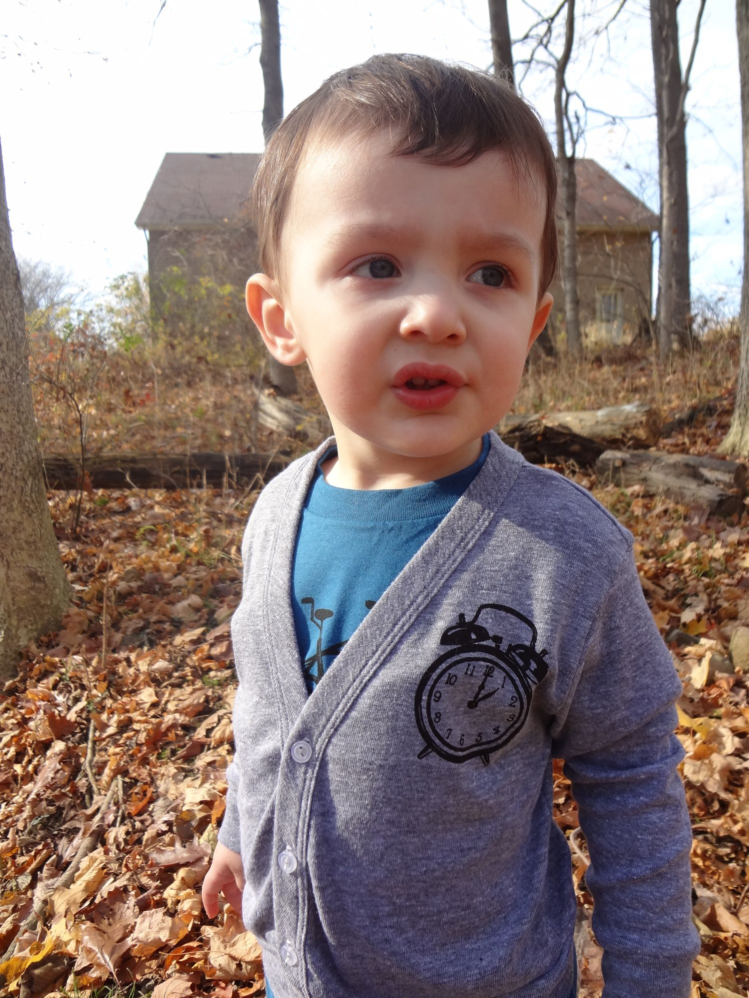 Check out these adorable hand screen-printed cardigans!  Made in the U.S.A.