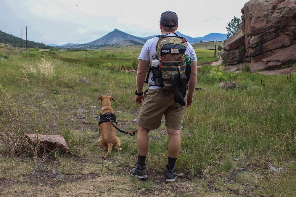 The Ezydog Convert Harness Review Dog Harness Running Dogs