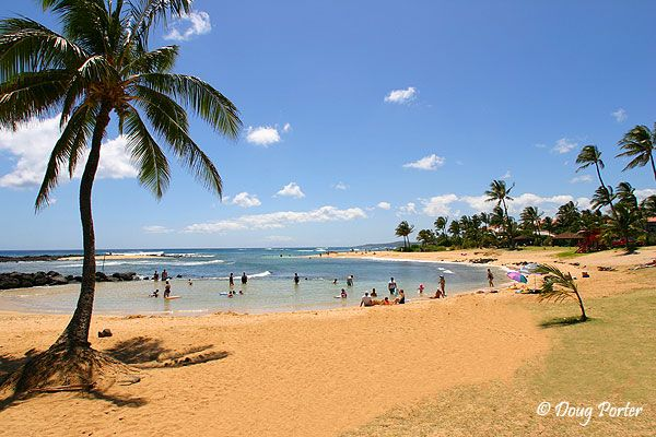 Kauai is the most beautiful Hawaiian Island...this is one of most beautiful beaches in kauai also can see whales swimming in the far distance
