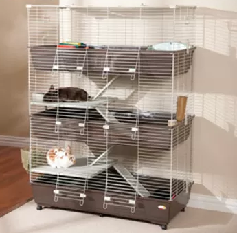 Why A Big Indoor Rabbit Cage Is Good For Your Bunny Indoor