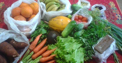 Cocina vegana moderna: Google+ Día de compras en Feria Franca, Eldorado, Misiones, Argentina