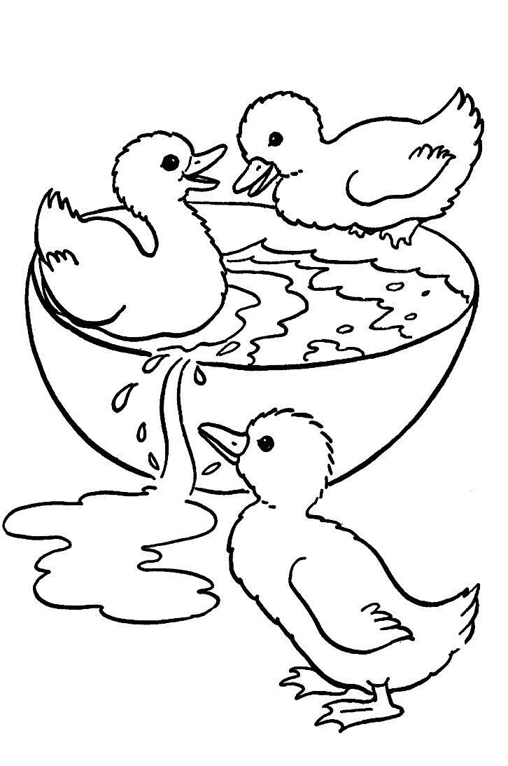 birds to color - Buscar con Google | Niños, arte y manualidades/Kids ...