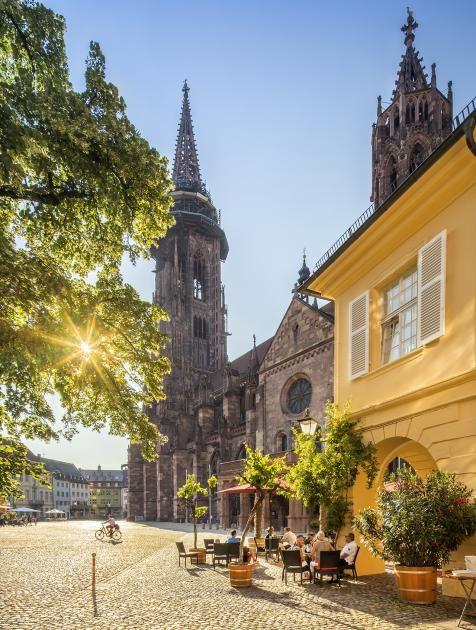 Freiburg: Diese Erlebnisse dürfen Sie sich nicht entgehen lassen