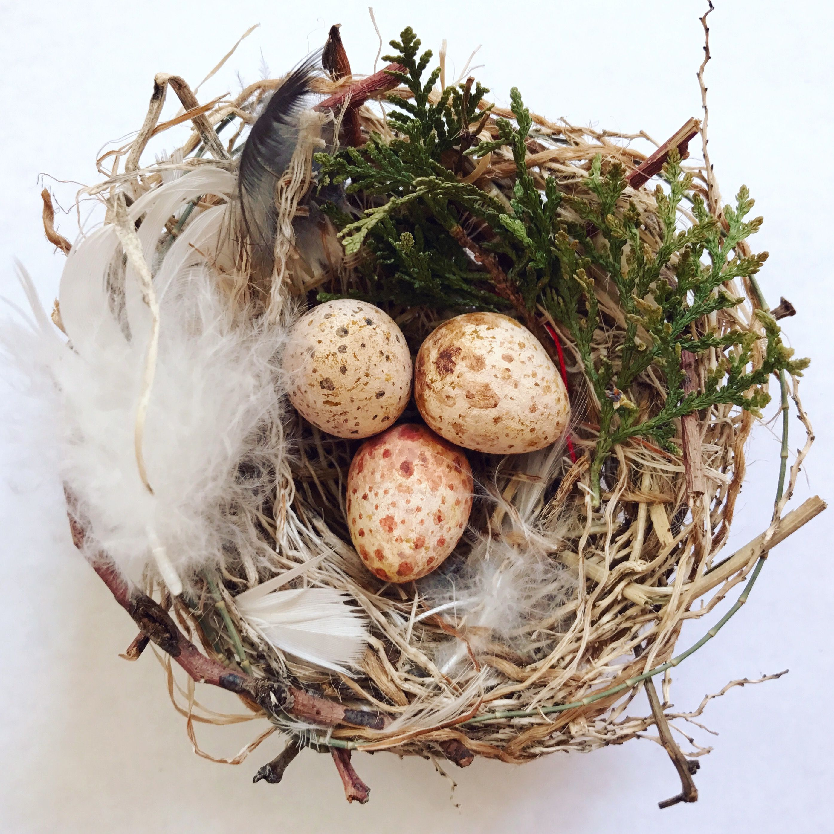 My Little DIY Birds Nest. Eggs Made From Paper Clay. Nest