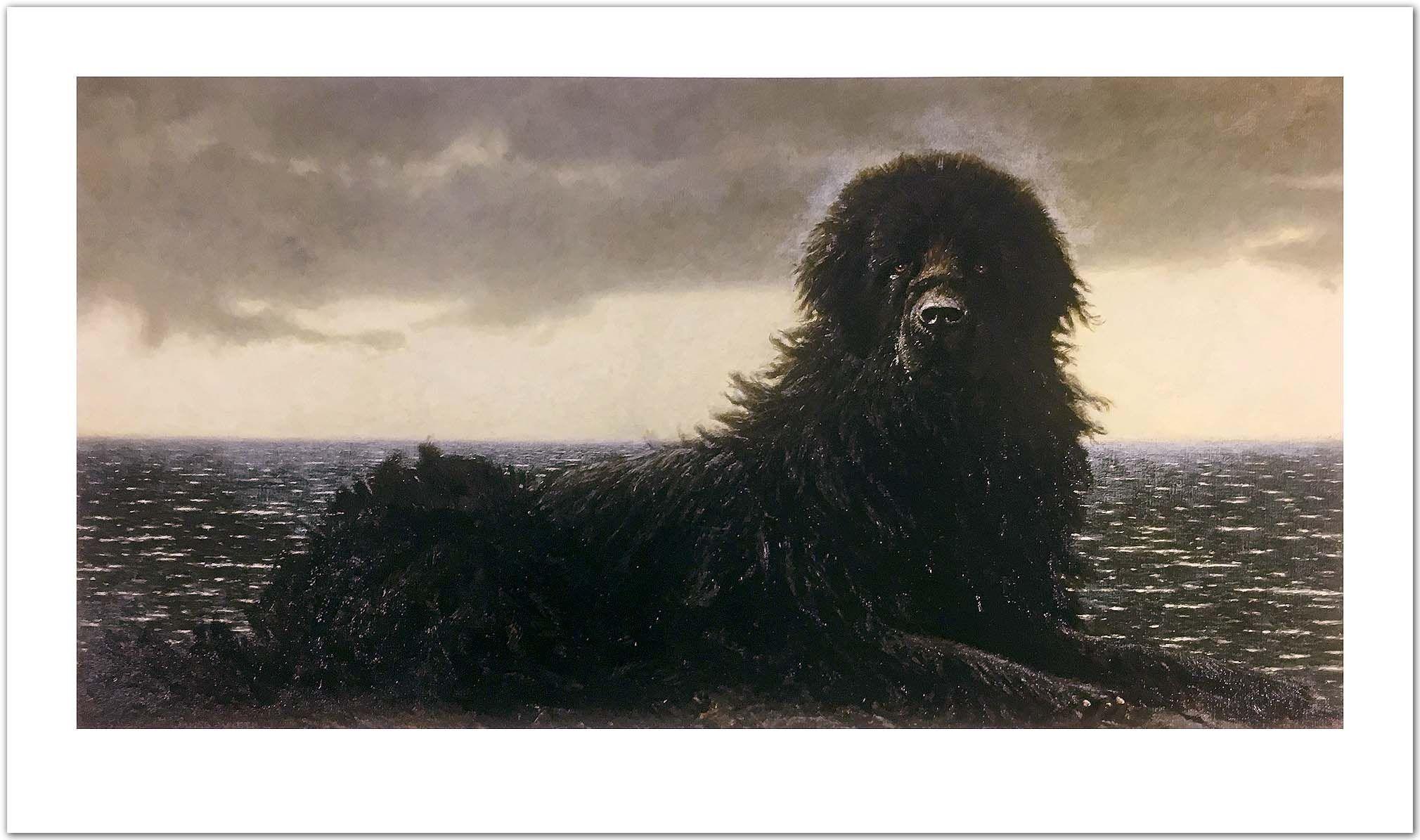 Newfoundland Newfoundland Jamie Wyeth Wyeth