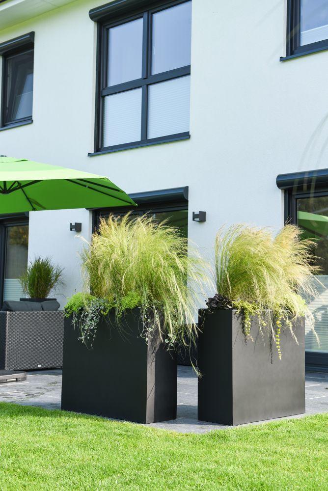 Für Sichtschutz auf der Terrasse sorgen diese Pflanzkübel ...