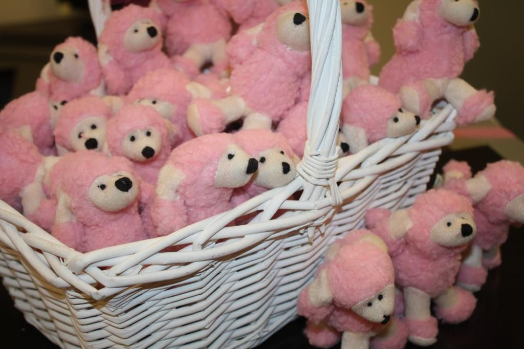 Cutest favor ever :-) pink poodles from Oriental Trading...for a Poodle Party
