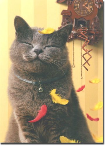 Satisfied Cat With Cuckoo Clock Birthday Card Greeting Card By