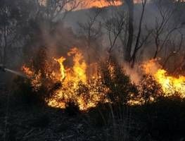 Bushfires flare up across NSW